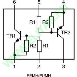 PUMH13 ���� 1